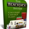 Who Says We Can't Take Over the Blackjack Strategy?
