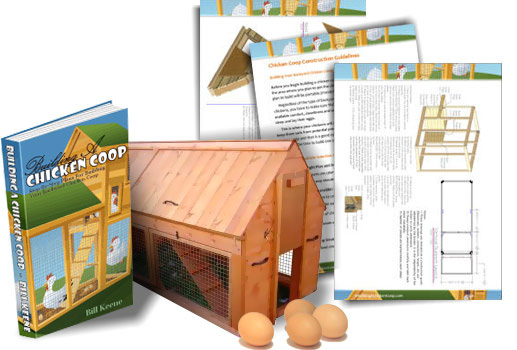 Building A Chicken Coop Review Who Says We Cant Save on Chicken Coops?
