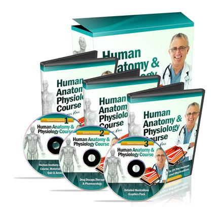 Human Anatomy Who Says We Cant Learn Anatomy and Physiology Of The Human Body  At Home?