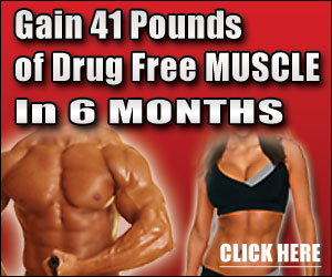 no nonsense muscle building review1 Definitive Muscle Workouts for the Serious Skinny Builder